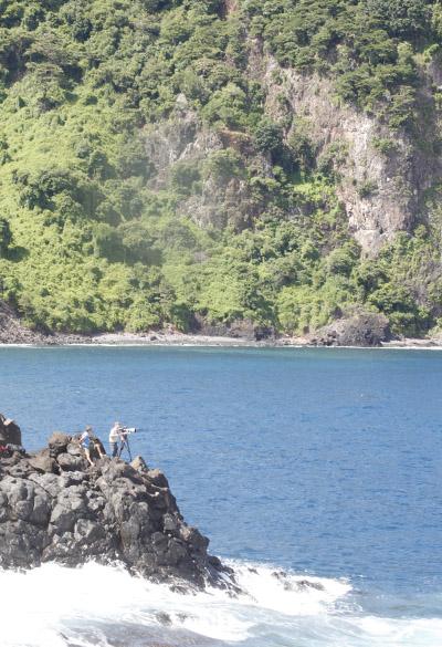 Dolphin Bay LS