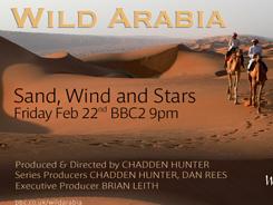Wild Arabia TXsmall