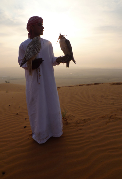 falconer2