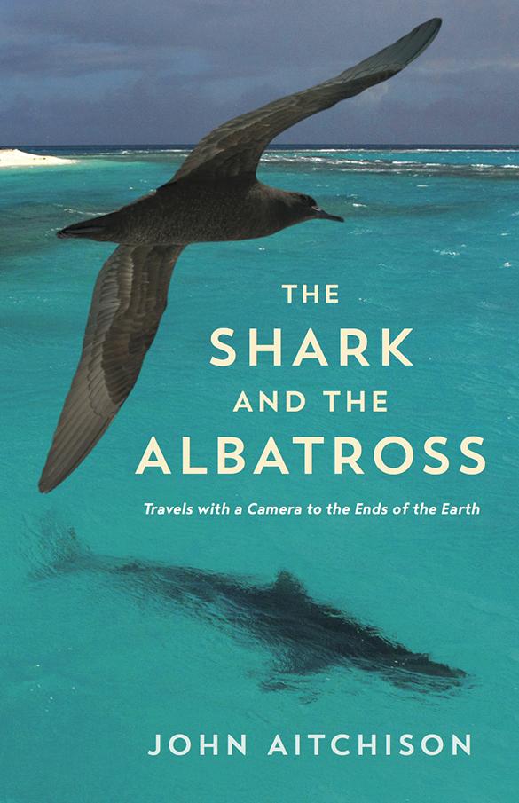 the shark and the albatross jacket design i585